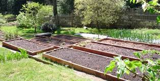 raised beds for spring planting