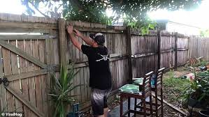 Cairns Neighbours Enjoy A Few Beers After Creating A Fold Down Fence To Socially Distance Daily Mail Online