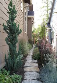 narrow trees for tight garden spaces