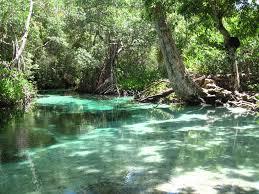 Relajarse en el Rio Frio, Rincon, LAs Galeras, Samana | Peninsula ...