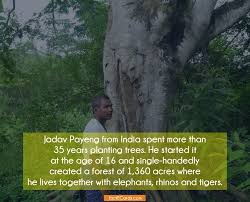 Jadav Payeng from India spent more than 35 years planting trees. He started  it at the age of 16 and single-handedly created a forest of 1,360 acres  where he lives together with