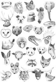 By Ana Kras Illustratie Dieren Dieren Tekenen En Kleurplaten