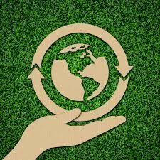 El cartón, propuesta ecológica para packagings |