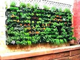 vegetable garden design ideas liamhome co