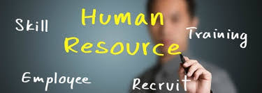 What is the Benefit of using a HR Consultant? - Nursery HR people