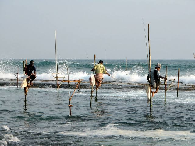 Image result for Distinctive And Also Old Fishing Technique