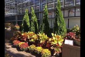 mcdonald garden center is opening a new