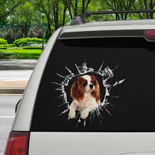 Get In It S Time For Shopping Cavalier King Charles Spaniel Car St Follus Com