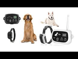 Best Wireless Dog Fences Top 20 Best Wireless Dog Fences For 2020 Top Rated Wireless Dog Fences Youtube