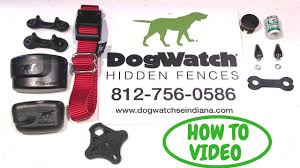 Dogwatch How To Change Settings And Troubleshoot Pro Fence Transmitter Pt4 Youtube