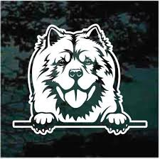 Chow Chow Peeking Decals Stickers Decal Junky