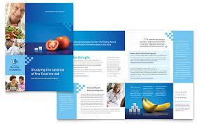 ian brochure template design