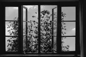 The Steady Gaze of Abbas Kiarostami | The New Republic