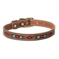inch native spirit dog collar