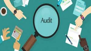Image result for bsr audit firm