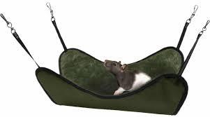 the best rat hammocks ratcentral