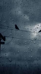 rain wallpaper 025 1080x1920 pixel
