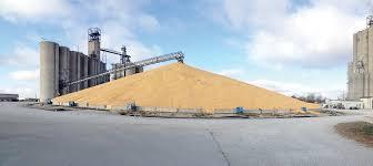 Bin-buster harvest | Creston News Advertiser