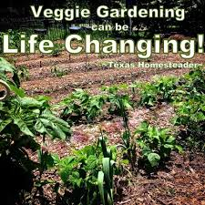 vegetable gardening can change your life