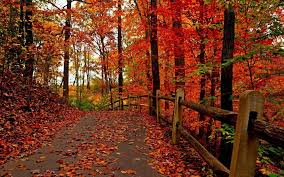 66 autumn screensavers wallpapers on