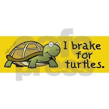 Breakforturtles Sticker Bumper I Brake For Turtles Bumper Sticker By Doghause Cafepress