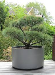 extra large round outdoor planter pot