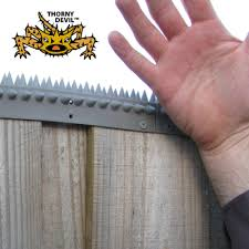 Fence Spikes Cat Spikes Possum Spikes Buy Online Diy Security Home Security Home Security Tips