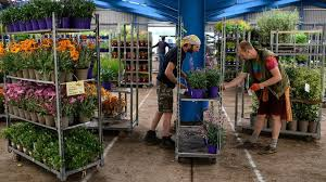 why garden centres reopened first