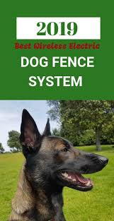 Best Electric Dog Fence System 2019 Dog Fence Wireless Dog Fence Dogs