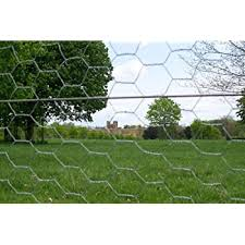 25m Roll Of 1 5cm 5ft Tall Chicken Wire Mesh 50mm Amazon Co Uk Garden Outdoors