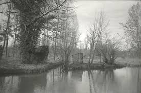 Jardins de bords de rivière – e-vellour
