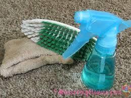 clean vomit off carpet or furniture