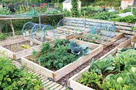 year round gardening tips for your