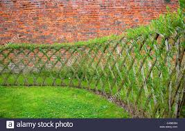 Live Willow Woven Screen Fencing Or Fedge England Uk Living Willow Fence Willow Fence Living Willow