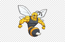 Honey Bee Decal Hornet Window Bee Honey Bee Insects Car Png Pngwing