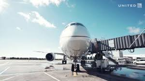 Requa Amend - Flight Attendant - United Airlines   LinkedIn