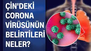 Çin'deki Corona (Korona) virüsü nedir? Belirtileri nelerdir? Şüphe anında  nasıl tedbir almalı? - YouTube