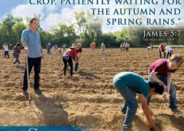 Review: Refugees grow faith from seeds of hope | Canadian Mennonite Magazine