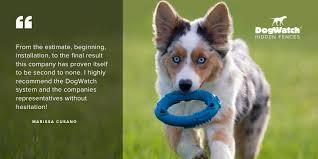 Dogwatch Fences Dogwatchfence Twitter