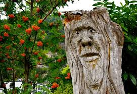 21 tree stump ideas for a quirky yard