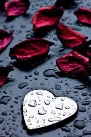 خلفيات حب للموبايل رومانسية مربع