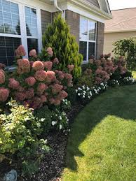 front yard landscaping pictures ideas