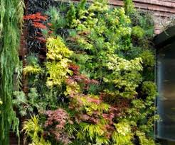 12 amazing vertical wall gardens