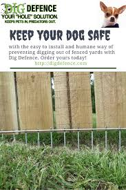 Easy To Install Humane Super Effective Get The Dig Defmence Solution For Keeping Dogs Safe And In Their Yards Digging Dogs Dog Fence Stop Dogs From Digging