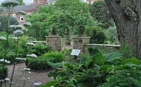 the chelsea physic garden damask damask