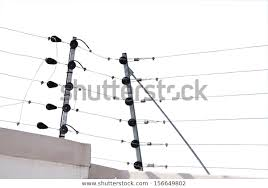 Isolated Electric Fence Installation On Boudary Stock Photo Edit Now 156649802