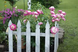 7 Secrets To Creating A Country Cottage Garden Huffpost Life