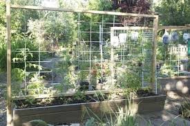 Welded Wire Livestock Panels In The Garden Olander Garden Design