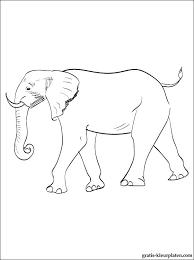Kleurplaat Met Een Olifant Gratis Kleurplaten