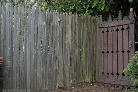 Grape Stake Fence And Old Gate Fence Design Fence Plant Nursery